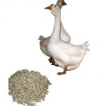 Комбикорм для гусей и уток