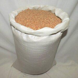 Пшеница Элита 1