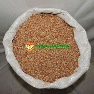 Пшеница Элита 2